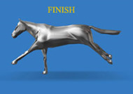 Racehorse Render finish.