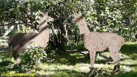 Garden stakes sheet steel lama and alpaca in the preserve height 150cm.
