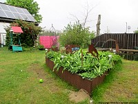 garden decoration raised beds tear drop plate I.
