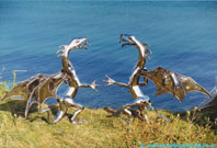 Steel dragons on the Baltic Sea.