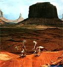Steel dragons in Navajo.